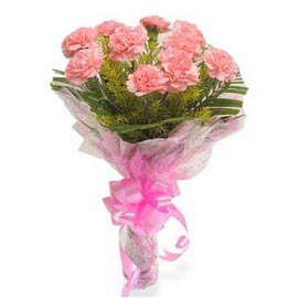 send 10 pink carnations bunch midnight delivery in kanpur