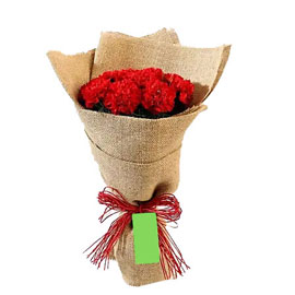 send 10 red carnations jute bouquet morning delivery in kanpur