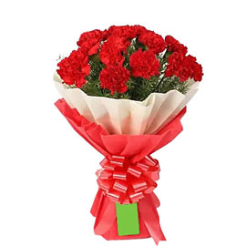 send 12 red carnations bunch morning delivery in kanpur