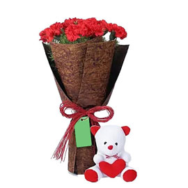send 12 red carnations bunch teddy combo morning delivery in kanpur