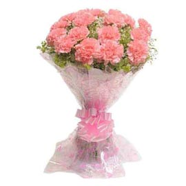 send 15 peach carnations bunch xpress delivery in kanpur