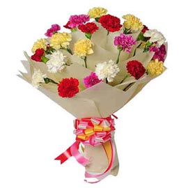 send 18 mix carnations bunch morning delivery in kanpur