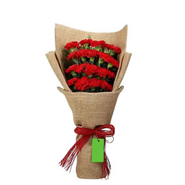 send 20 red carnations bouquet morning delivery in kanpur