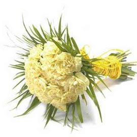 buy 20 yellow carnations bunch urgent delivery in kanpur