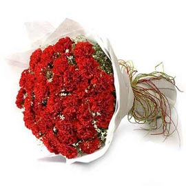 buy 25 red carnations bunch 24 hrs delivery in kanpur