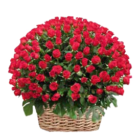 buy 250 red roses round shapebasket same day delivery in kanpur