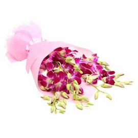 send 6 purple orchids paper bunch urgent delivery in Kanpur