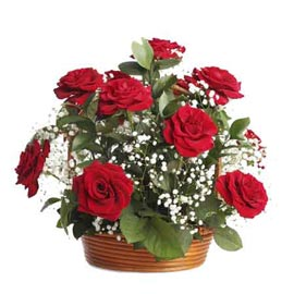 buy 20 red roses cane round basket same day delivery in kanpur