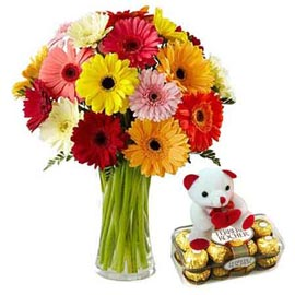 Buy online ferrero rocher, cute teddy n mix gerberas bunch in kanpur