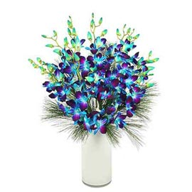 send 10 blue orchids glass vase midnight delivery in Kanpur