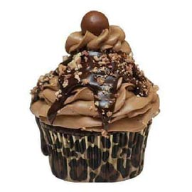 Send online chocolate mocha cup cake delivery in kanpur