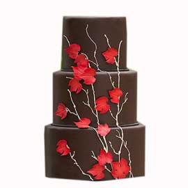 Send online choco palm party chocolate cake delivery in kanpur