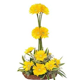 send 10 yellow gerberas cane basket express delivery in kanpur