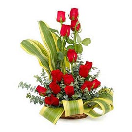 buy 15 red roses cane one sided basket same day delivery in kanpur