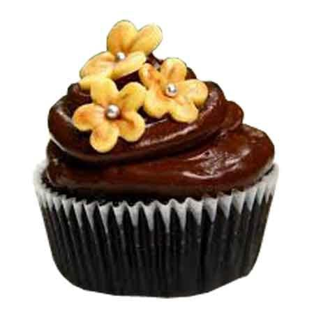 Send online floral chocolate brownie cup cake delivery in kanpur