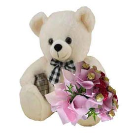 Send online 1 feet teddy n carnations n rocher chocolates bunch in kanpur