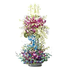 send 50  purple n blue orchids cane basket urgent delivery in kanpur