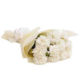 buy 10 white carnations bunch same day delivery in kanpur