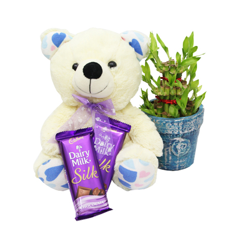 Buy online 3 layer lucky bamboo n teddy with 2 silk chocolate in kanpur