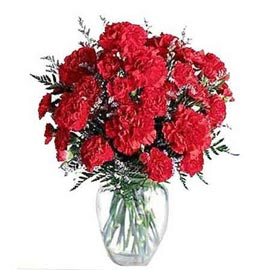 send 20 red carnations glass vase same day delivery in kanpur