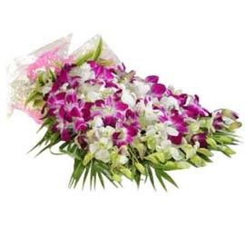 send 10 purple orchids paper bunch same day delivery in kanpur