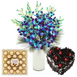 Send online Orchids, chocolates n black forest cake in kanpur