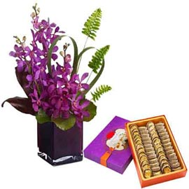 Midnight online Orchids vase n anjeer barfi in kanpur