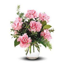send 10 pink carnations glass vase same day delivery in kanpur