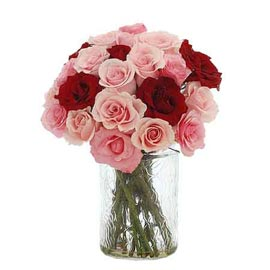 buy 20 pink & red roses glass vase 24 hrs delivery in Kanpur