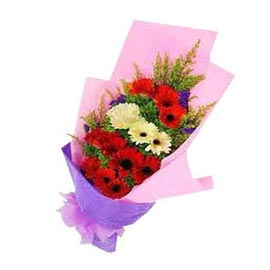 buy white & yellow gerberas bunch xpress delivery in Kanpur