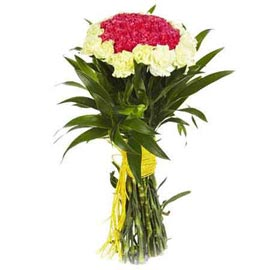 buy 20 yellow n red carnations bunch 24 hrs delivery in kanpur