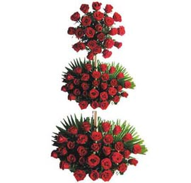 send 100 red roses tall basket 24 hrs delivery in kanpur