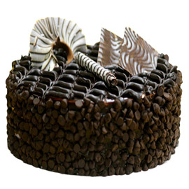 half kg choco chip delight cake midnight delivery in Kanpur