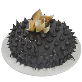 Chocolate Spike Cake kanpur