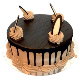 24 hrs delivery of half kg chocolate desire cake delivery in kanpur