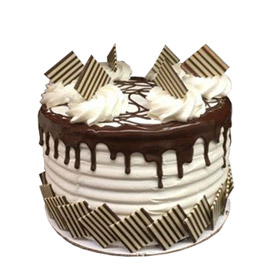 Premium Chocolate Cake Delivery in Kanpur