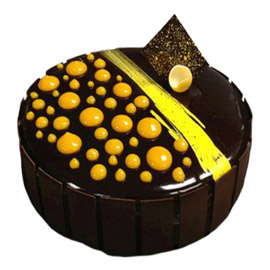 Rich Chocolate Truffle Cake Kanpur