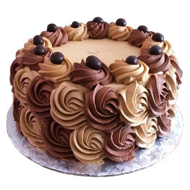 Sober Chocolate Rose Cake Kanpur