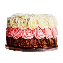 Urgent online you are special cake delivery in kanpur @ best cake shop